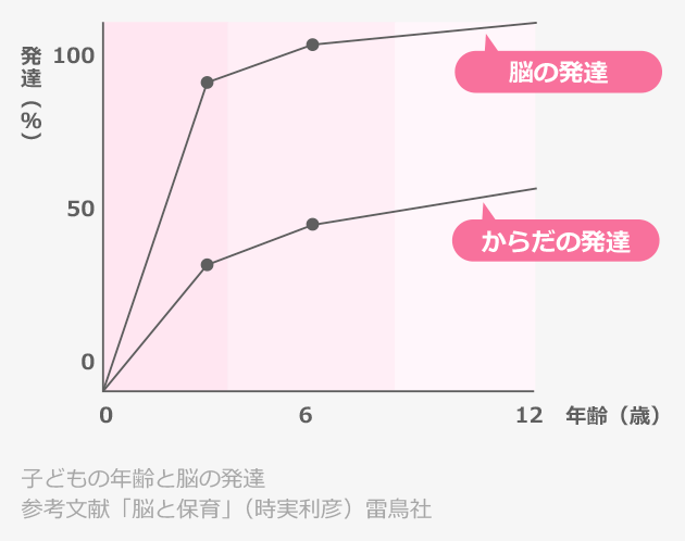 子供の年齢と脳の発達のグラフ